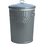 20 Gallon Galvanized Trash Can with Lid